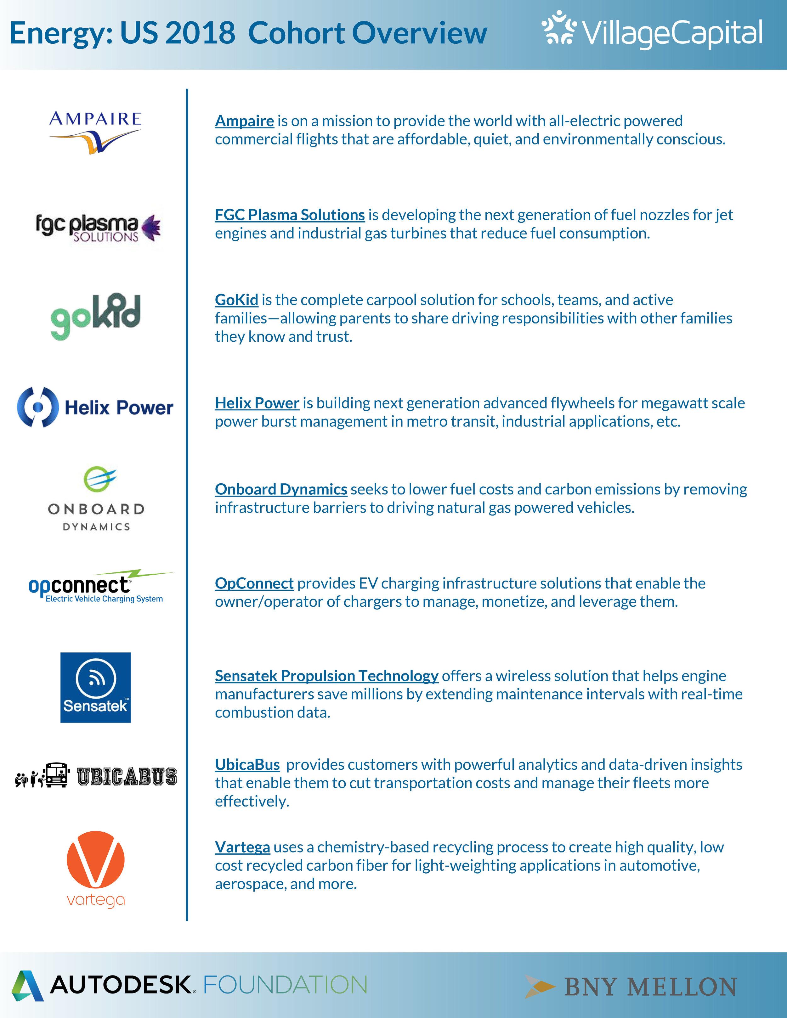Energy 2018 Cohort Overview.jpg