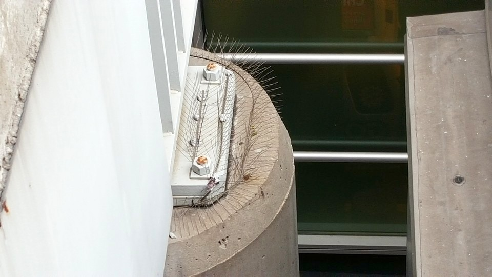 Bird spikes installed to keep birds from nesting on the top of this concrete support.