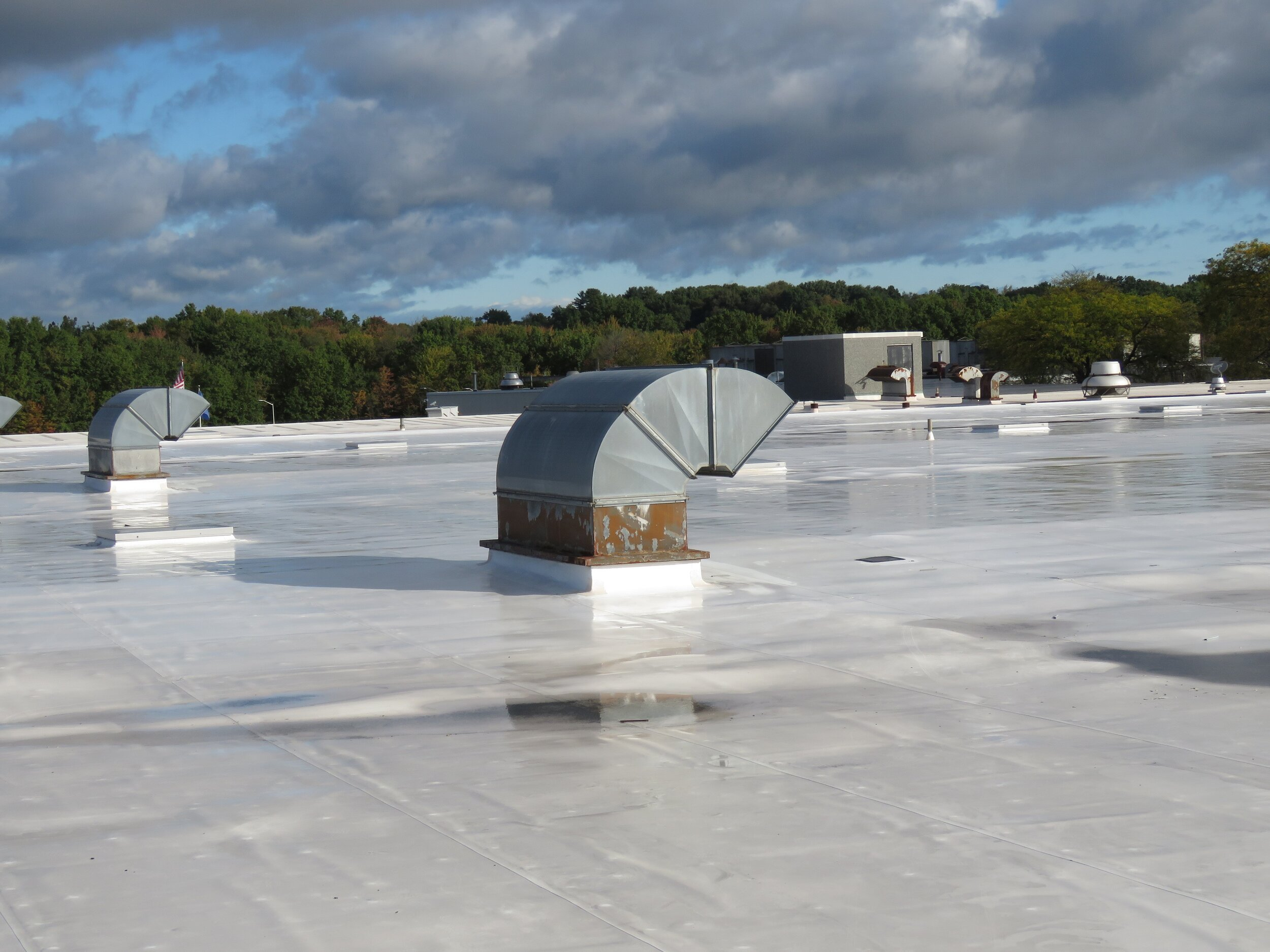 A CPE Single-Ply Roof Membrane