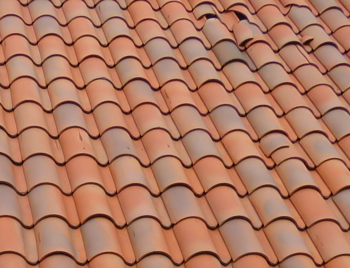 Replace broken tiles to prevent roof leaks.