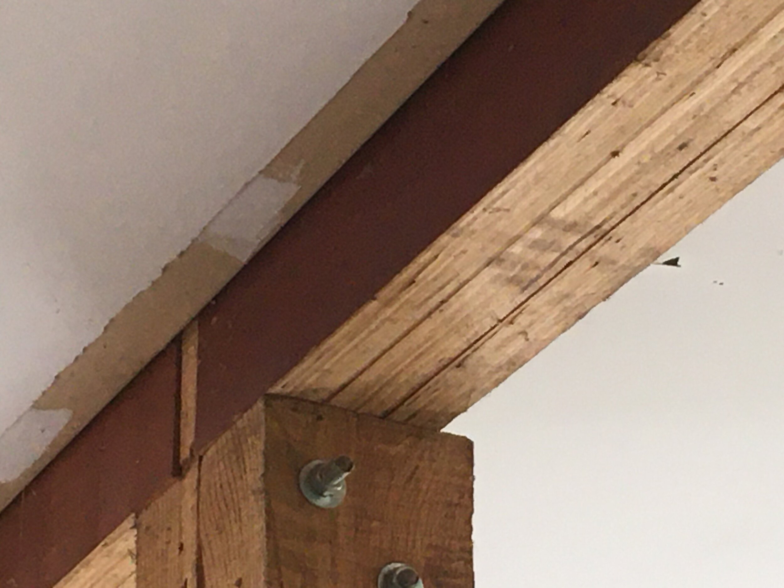 RoofOnline.com - Images - Engineered Wood - Image 1 .jpg
