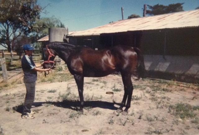 HORSES AND RICK 3.jpeg
