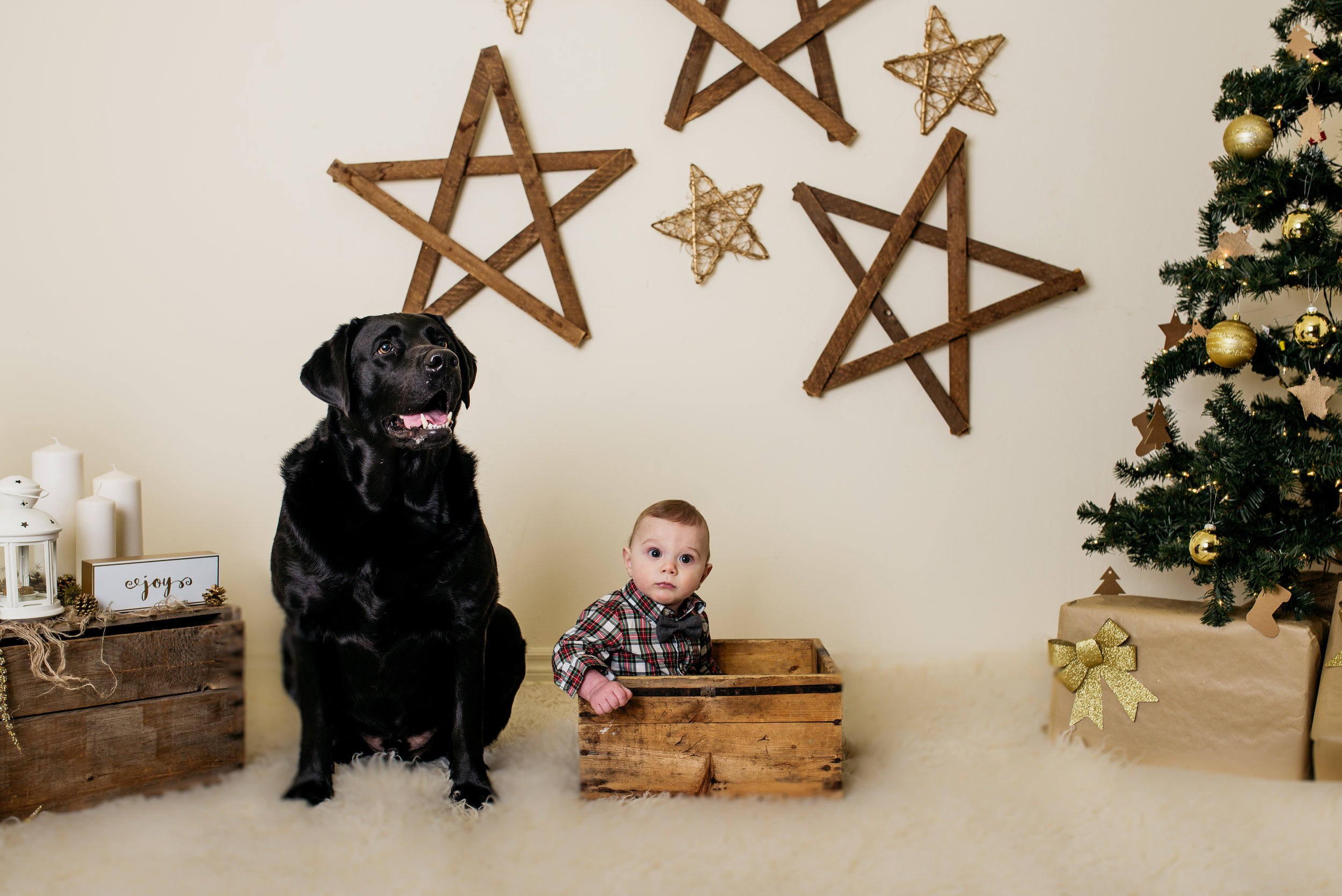 burlington family photographer, family photographer,christmas mini,christmas,lifestyle photpgrapher