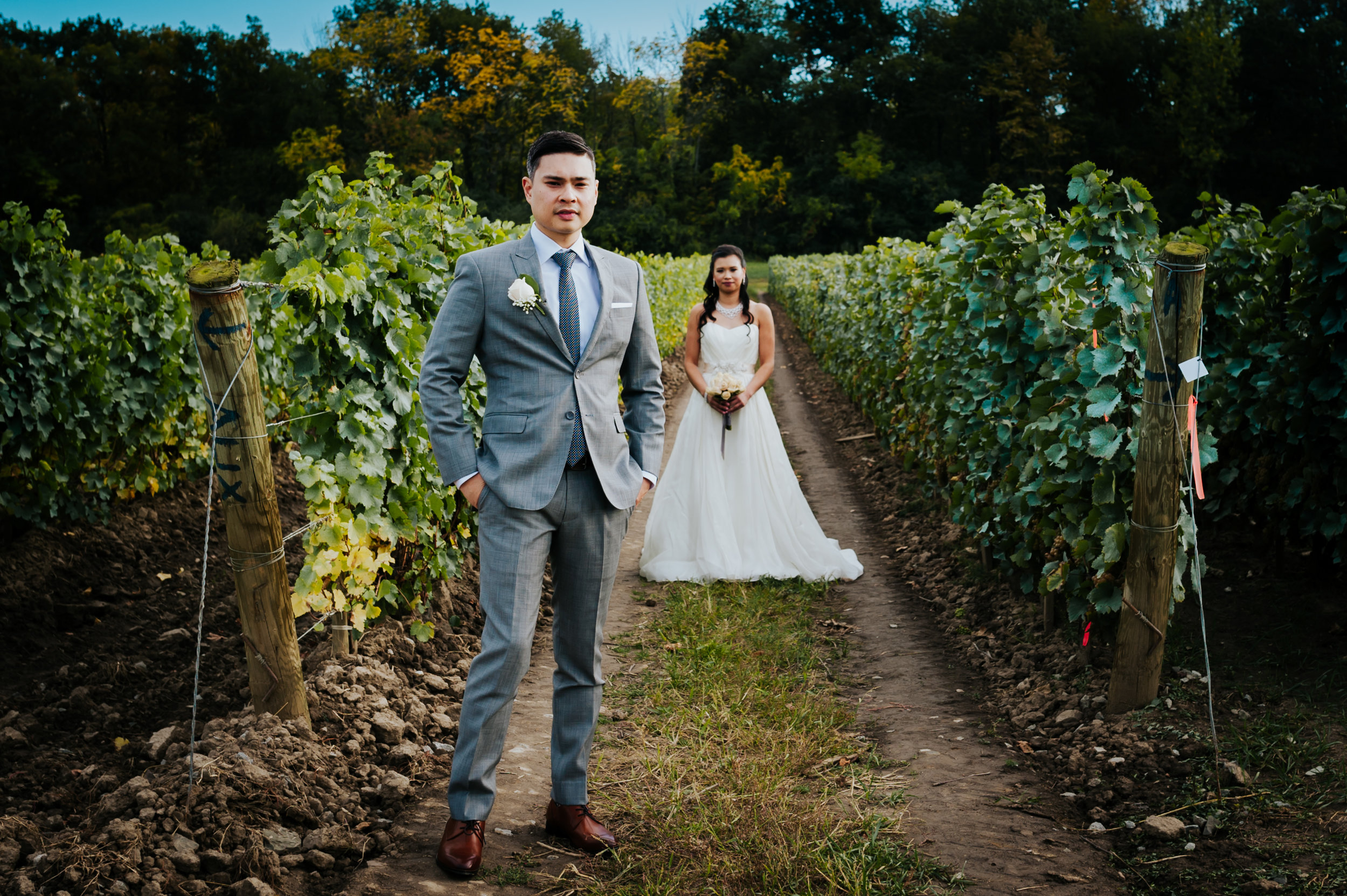 wedding photographer, vineyard, Niagara-On-The_Lake, love, Burlington wedding photographer