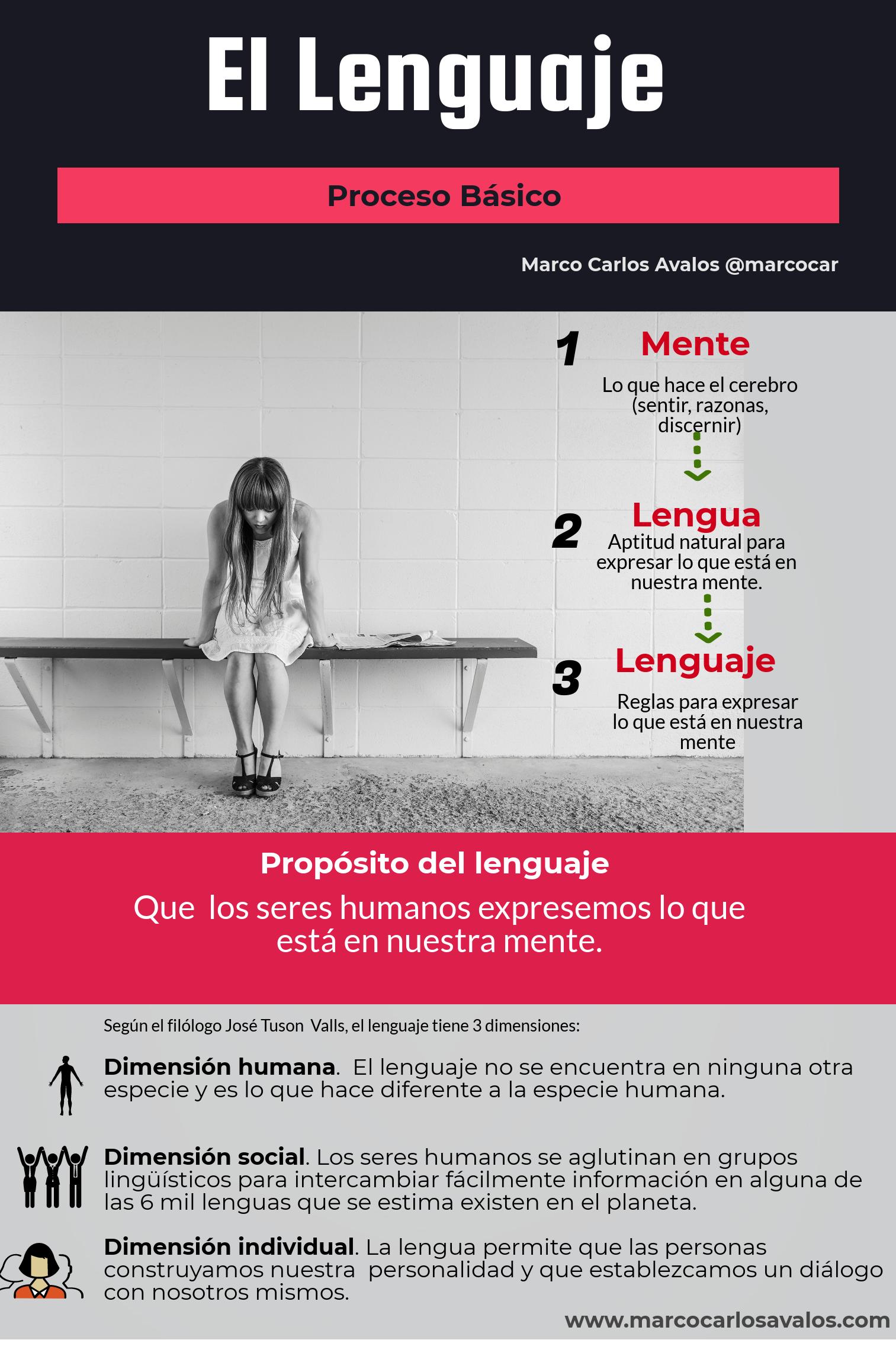 el-proceso-del_lenguaje.png