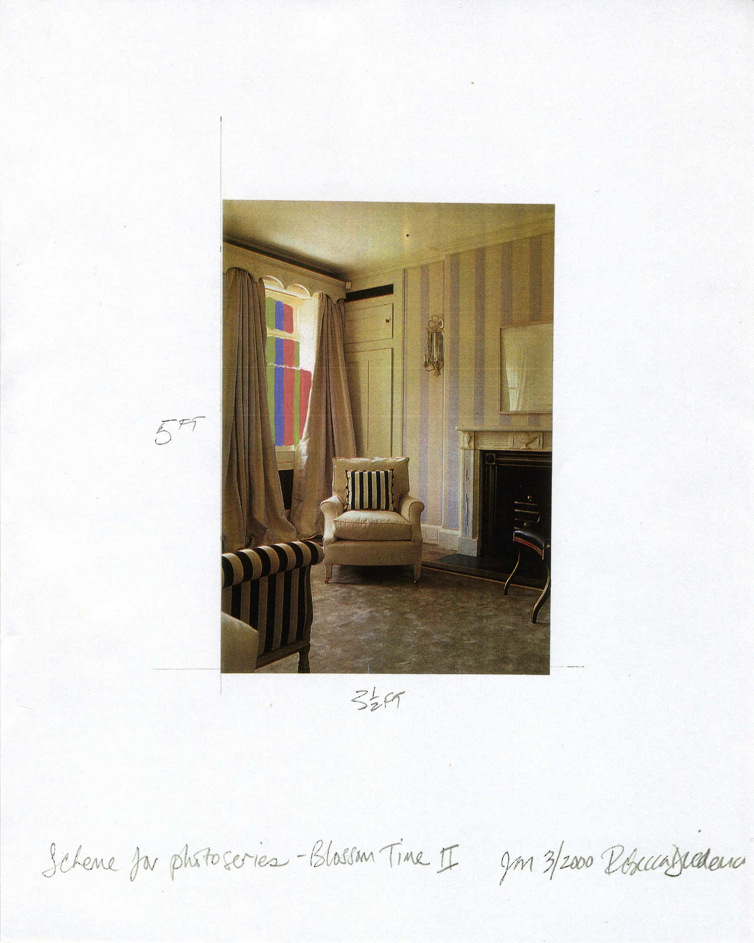 REBECCA DIEDERICHS  Scheme for photo series, Blossom Time II , 2000 Xerox