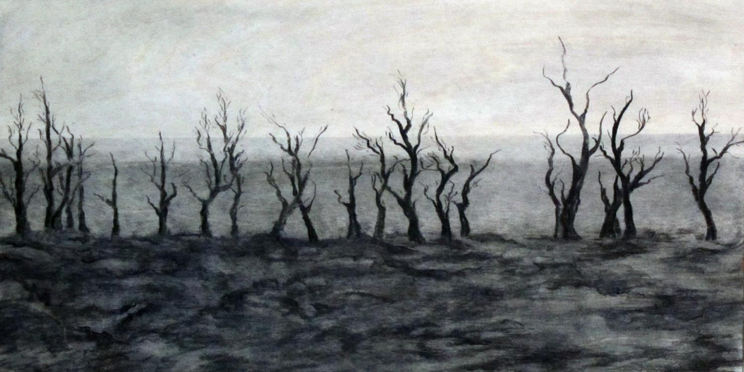 LYNN CHRISTINE KELLY   Scorched Earth 3  ,  Charcoal on wood panel, 12x24 inches.
