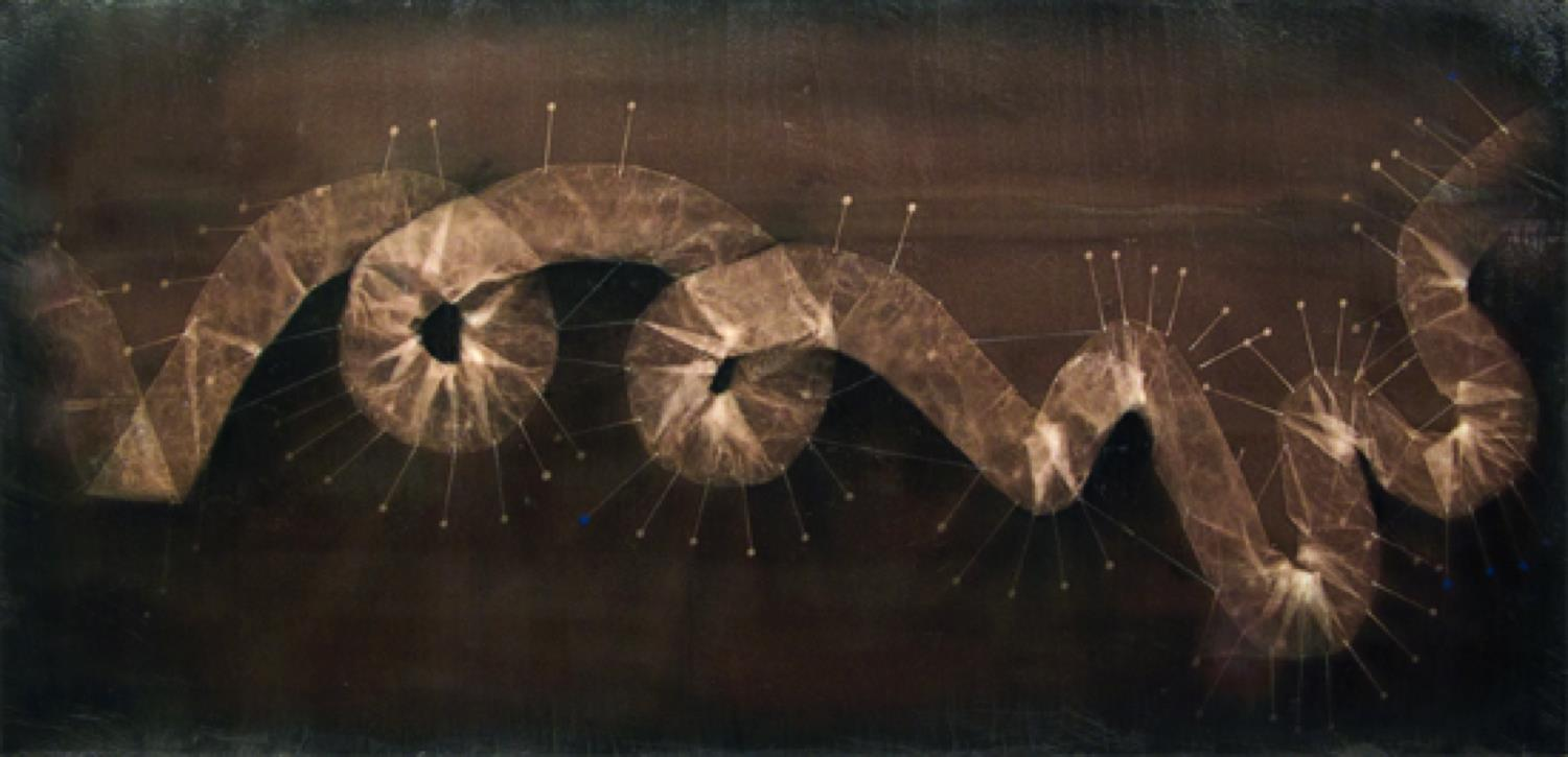 "LAURA CUNNINGHAM  Untitled     Vandyke print photogram and mixed media,   14"" x 29"""