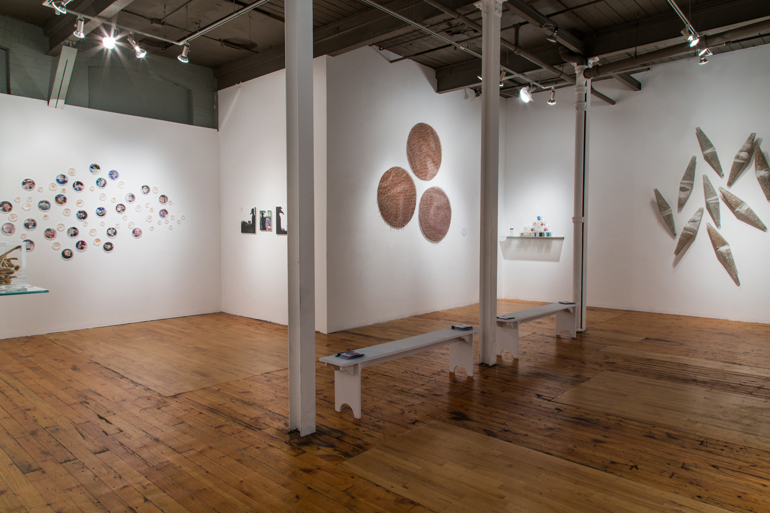 Ambient Plagues,  2013 Installation view