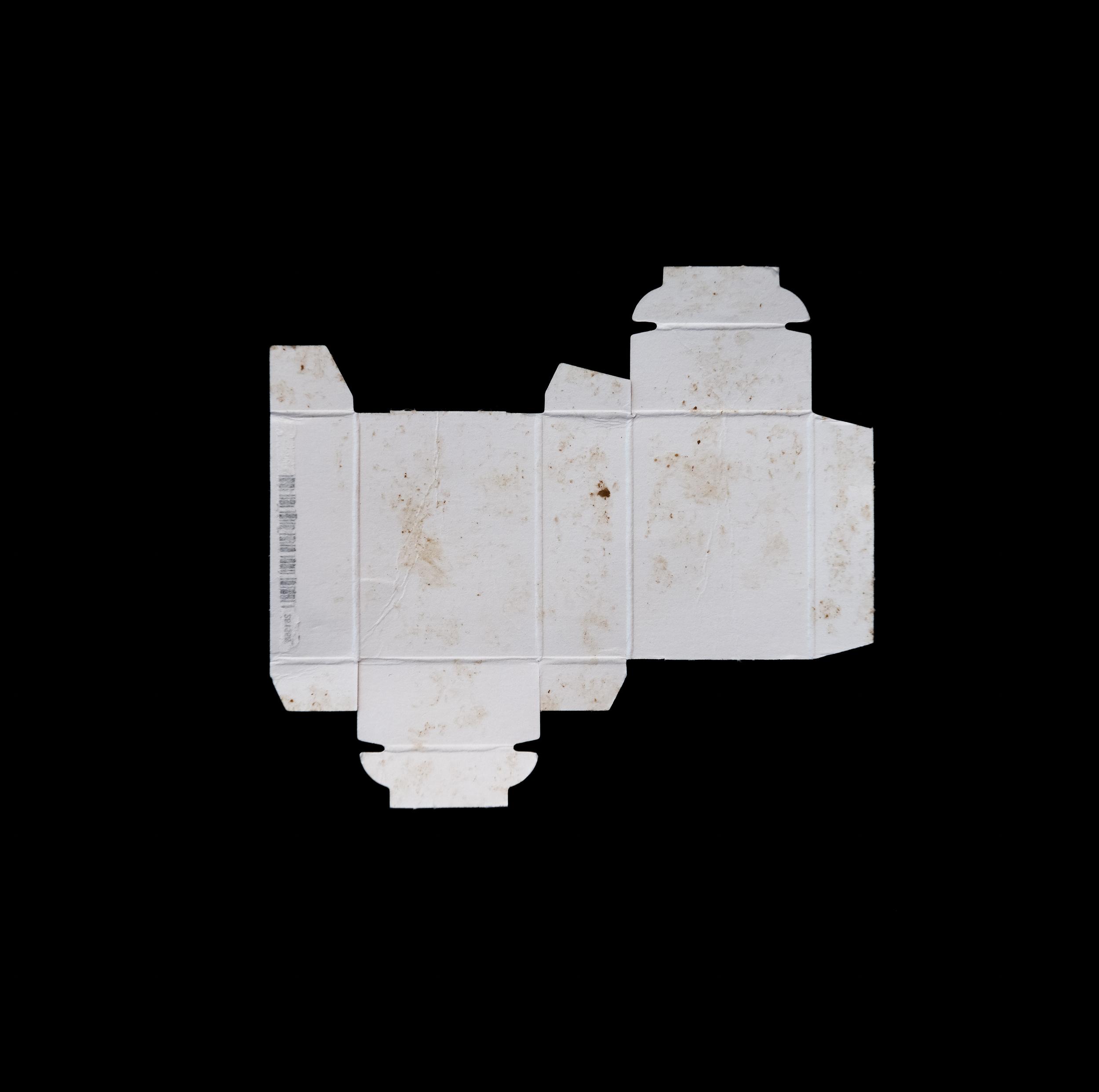 form follows (dis)function: Sunkist Raisin , 2014-15 Pigment Inkjet