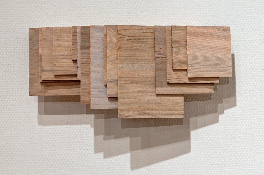 LEAH GARNETT   Cladding, 2015  Stained cedar shingle scraps, and plywood