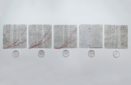 "Ebola Graph (series)  20"" x 20"" (each grid) Grown salt crystals, wool, wire, halobacteria, petri dish Photo by David Williams 2015"