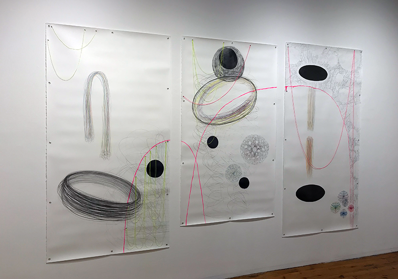 What I sense about density and direction , 2019 Graphite, pencil crayon, ink, marker, masonry twine, embroidery floss, grommets