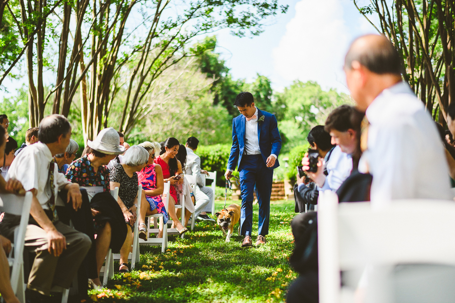 024 - dog walking down the wedding aisle.jpg