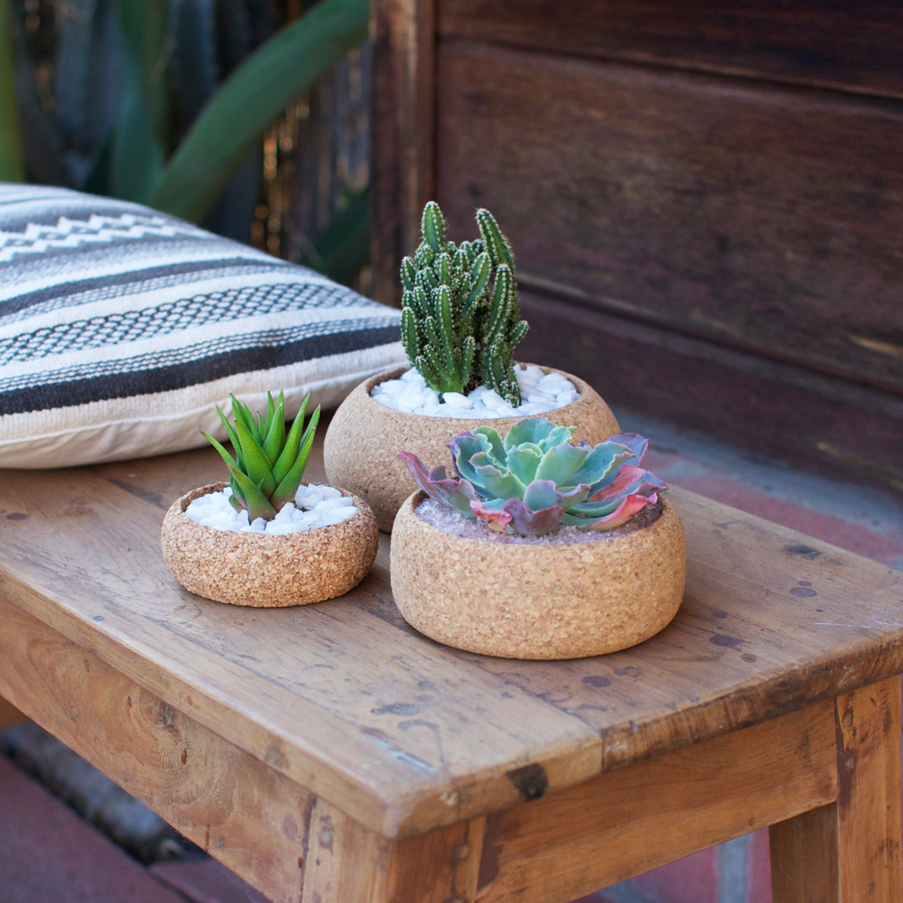 Cork Planters in every size!