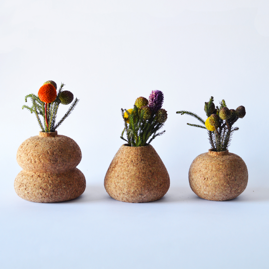 Cork Vases looking cute side by side.
