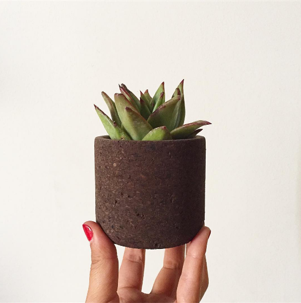 Mini Black Cork planter was an experimentation for this new cork. Sold him for $45.