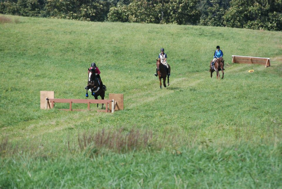 Sponsor one of the lovely jumps on our course!
