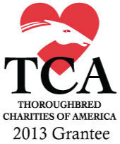 TCA.LogoAkindaleSponsorFooter.jpg