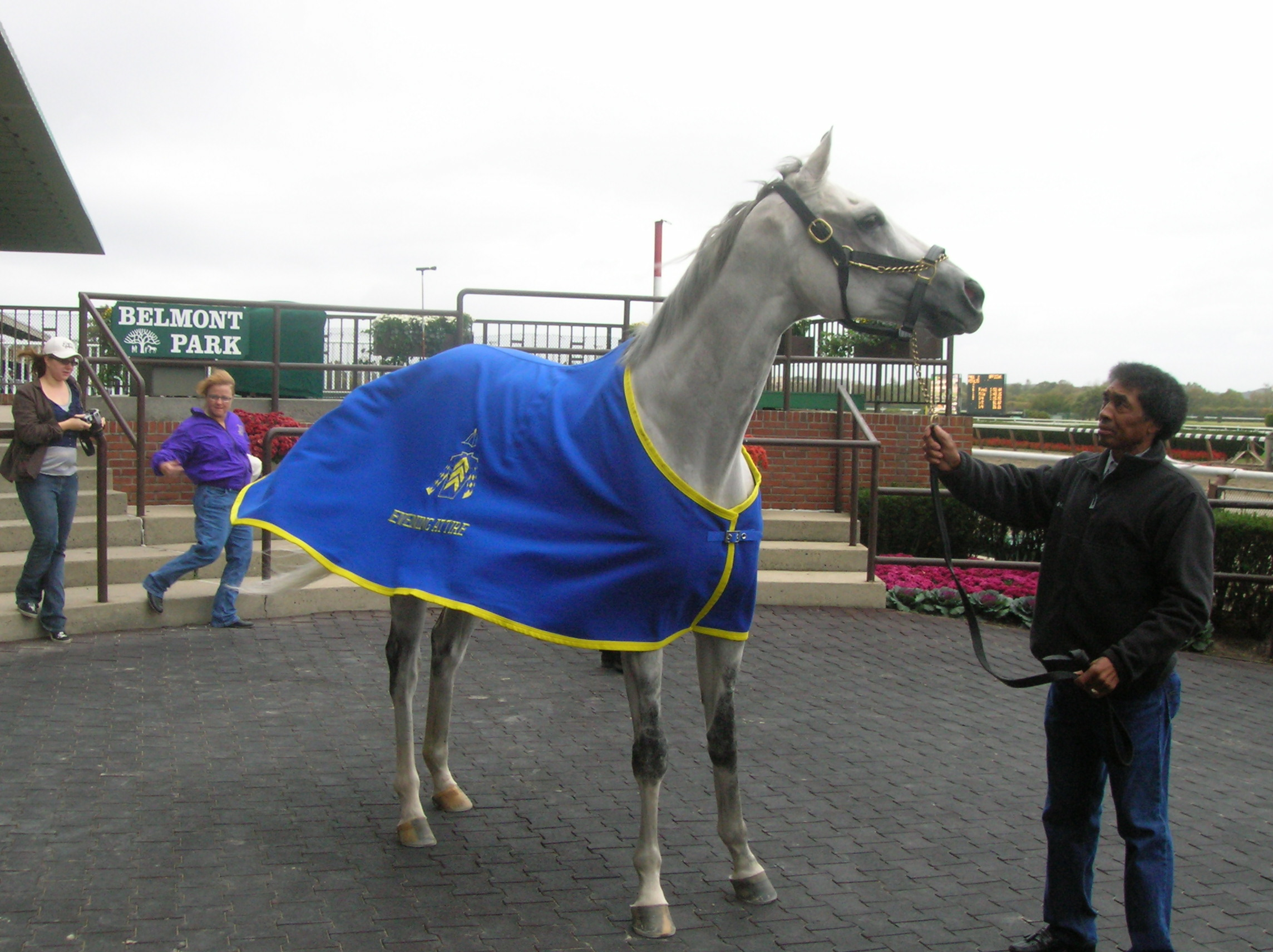 Evening Attire on the day of his official retirement at Belmont Park, September 2008. Photo credit Teresa Genaro