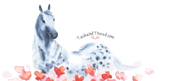 Tack and Tweed, Whimsical equestrian designs. From clothing to bags and accessoroes, something for everyone!