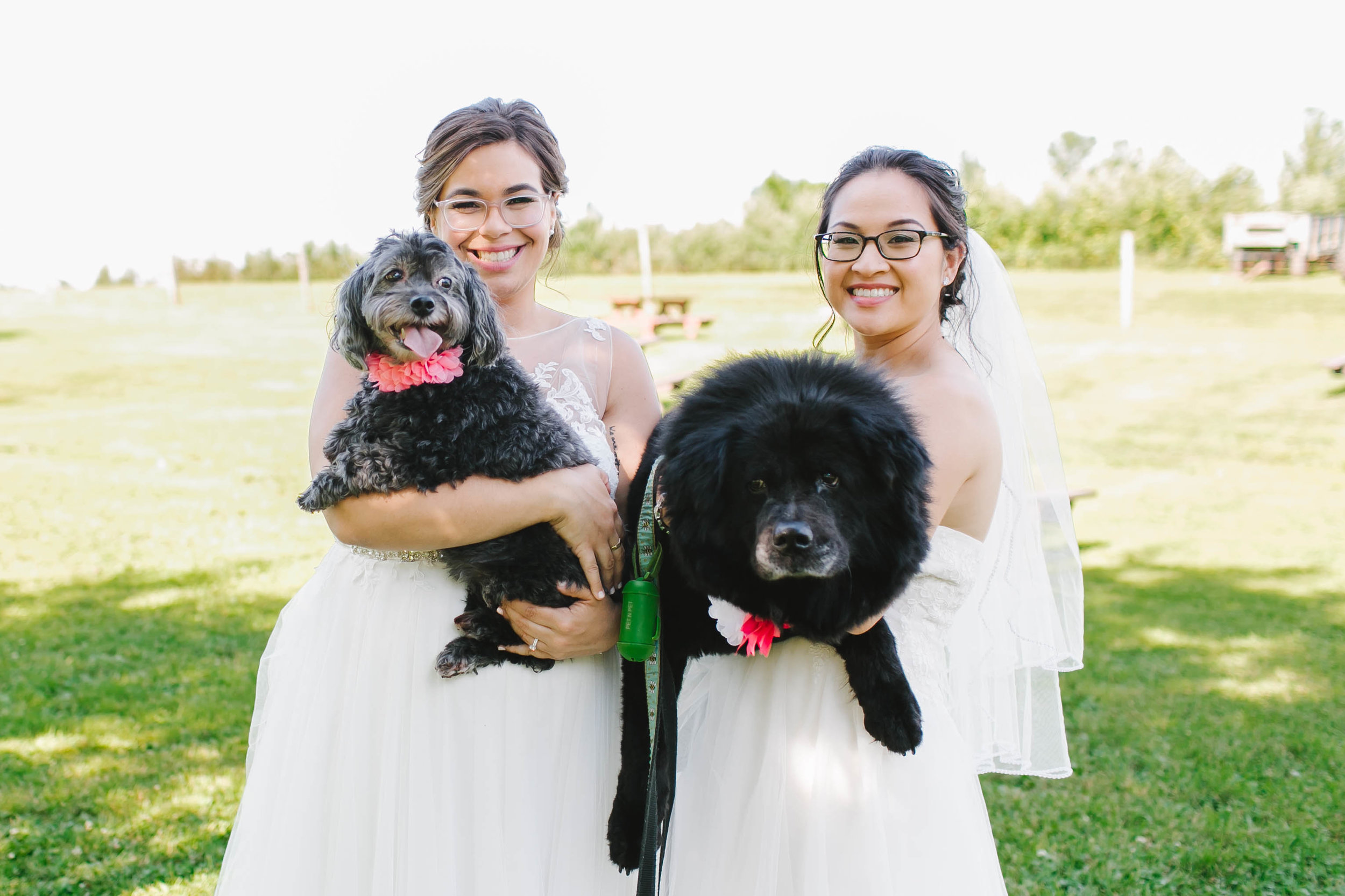 Hyland Orchard and Brewery Wedding with dogs - Emily Tebbetts Photography-17.jpg