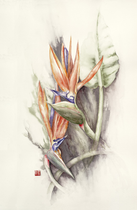 """Birds of Paradise II   Watercolor on 140 lb. cold-pressed Arches 21.5"""" x 14"""""""