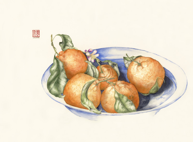 """Mandarin Oranges   Watercolor on 140-lb cold-pressed Arches, 14"""" x 19"""""""
