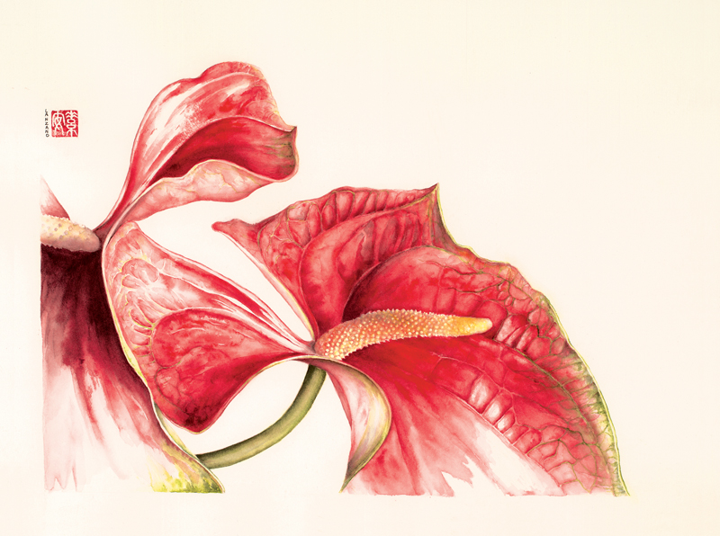 """Red Anthuriums  Watercolor on 140 lb. hot-pressed Arches, 12"""" x 16"""""""