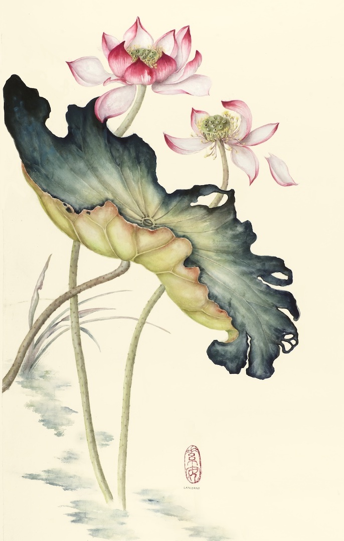 """Lotus at Season's End   Chinese ink and watercolor on sized rice paper,24"""" x 14"""""""