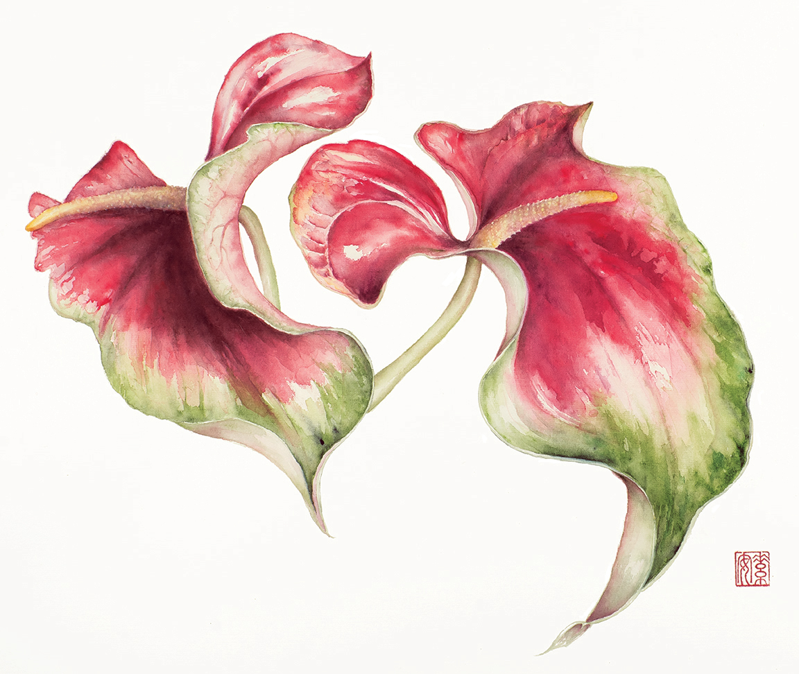 """Obake Anthuriums  Watercolor on sized rice paper, 17"""" x 23"""""""