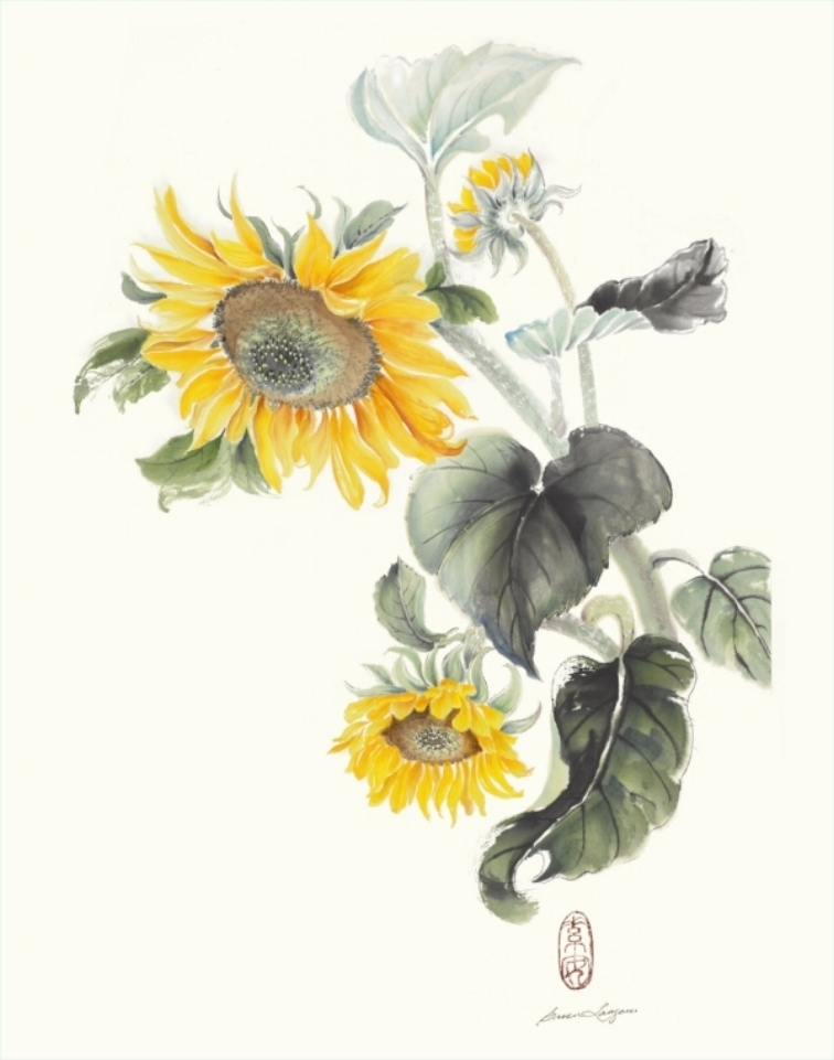 """Sunflowers   Chinese ink and watercolor on raw rice paper, 21.5"""" x 15"""""""
