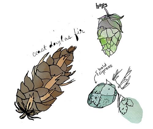 cones.jpg