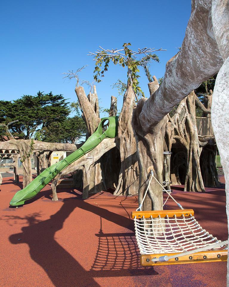 SF Zoo.Playground.Banyon Tree.IMG_1053edited1-X2.jpg