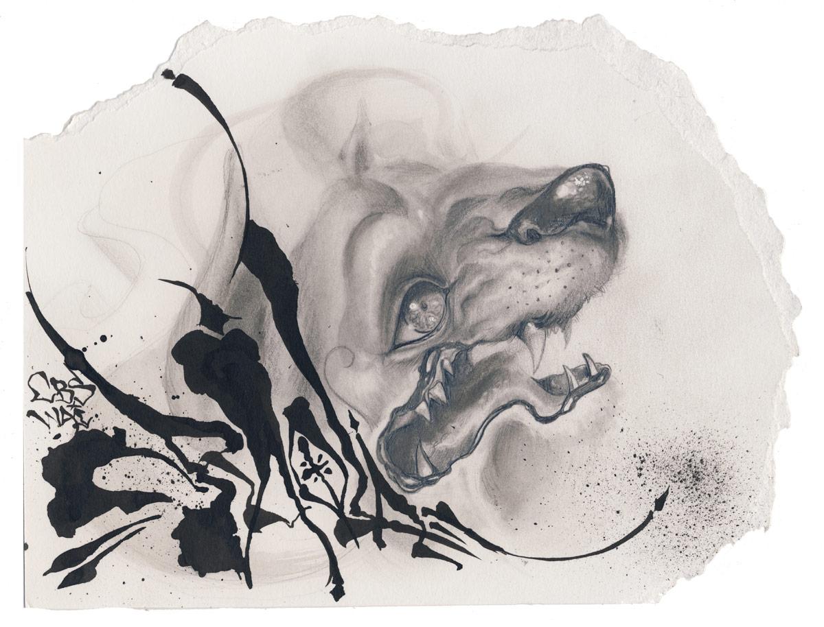 Lion Head (Study)