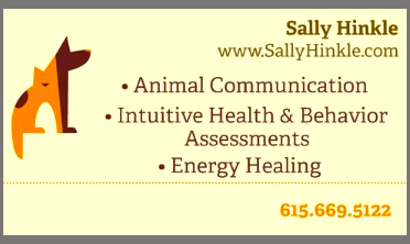 animal-business-card.png