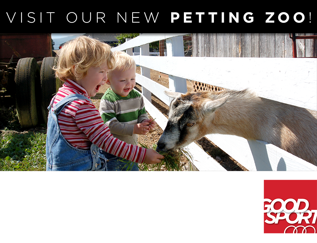 The Smith brothers feed a hungry goat at the GOOD SPORT's Mobile Petting Zoo during a weekend visit.