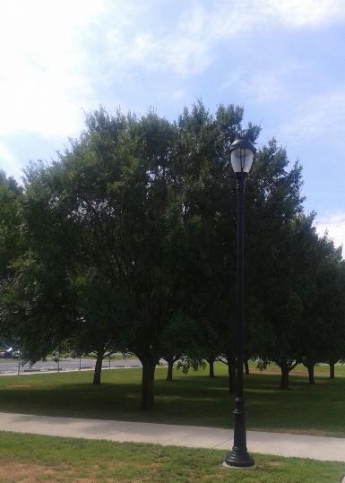 UGA Griffin Campus