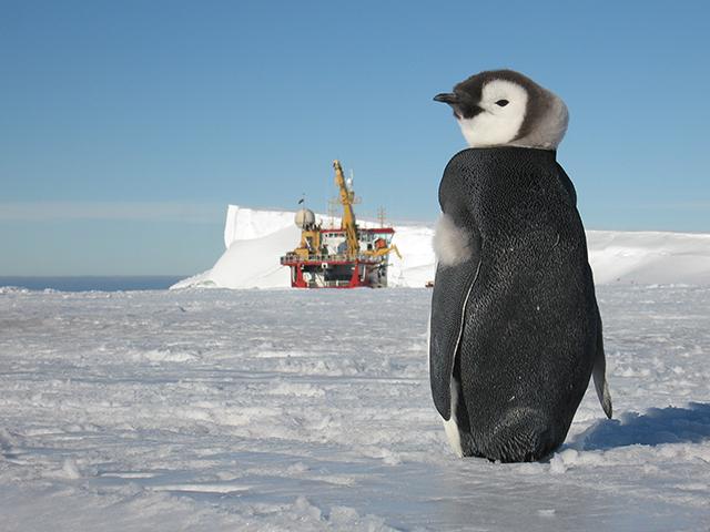 Halley-VI-Antarctic-Opens-Hugh-Broughton-British-Antarctic-Survey-3.jpg