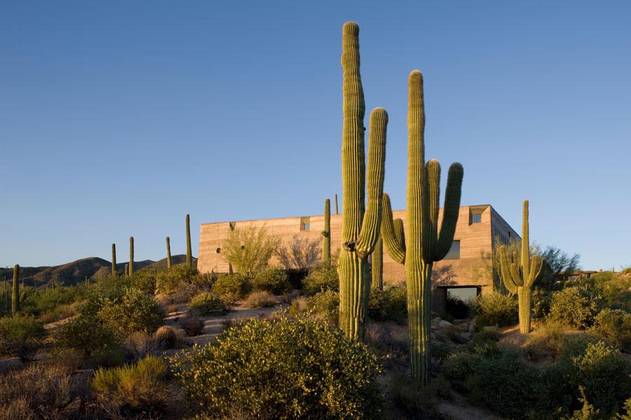 Modern-Architecture-Desert-C.jpg