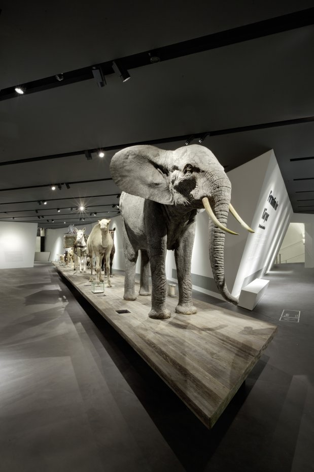 Daniel-libeskind-military-museum-6.jpg