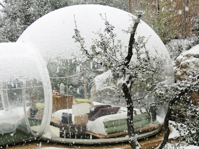 Bubble-Hotel-France-treehouse-4.jpg