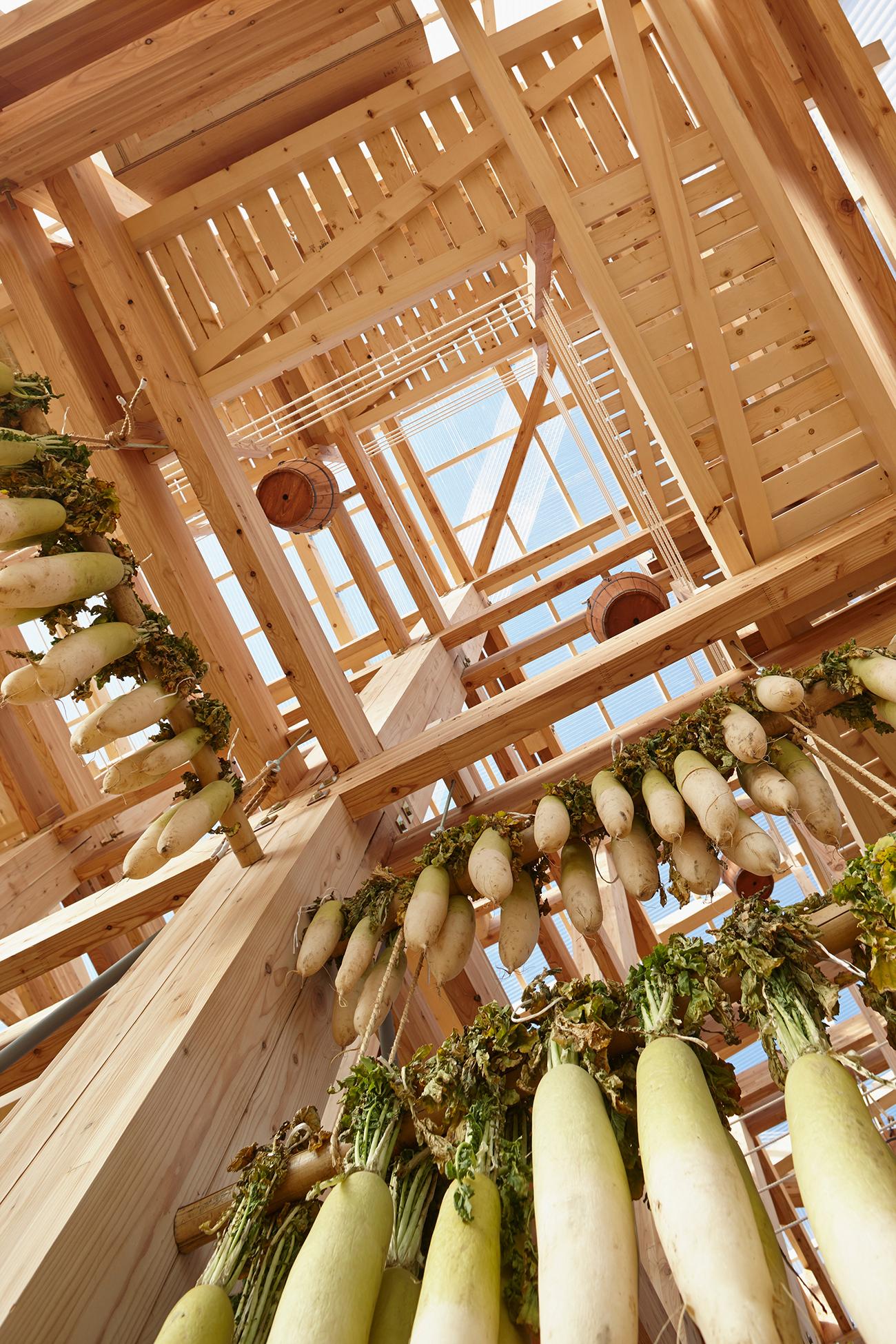 Kengo Kuma's Nest We Grow Opens at UC Berkeley