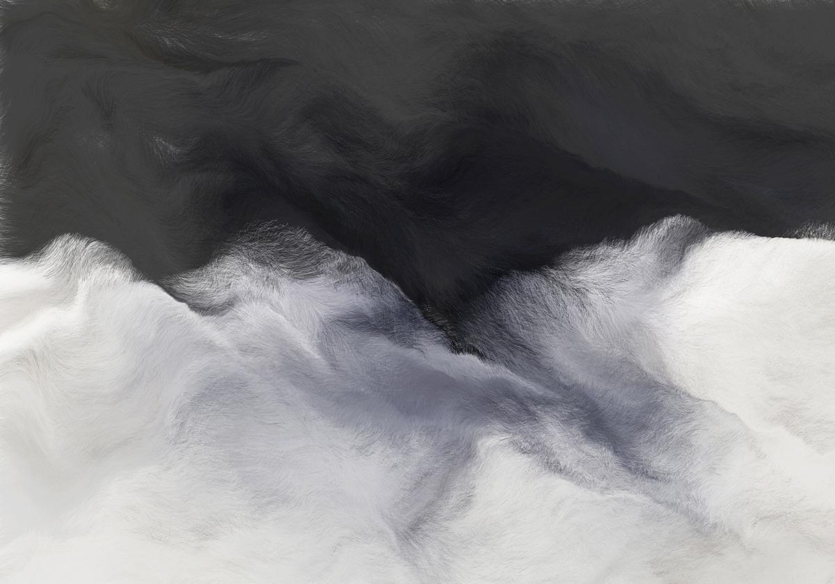 Schwarm II, Schwarz, Andreas Nicolas Fischer, 90 × 60 cm; 2012