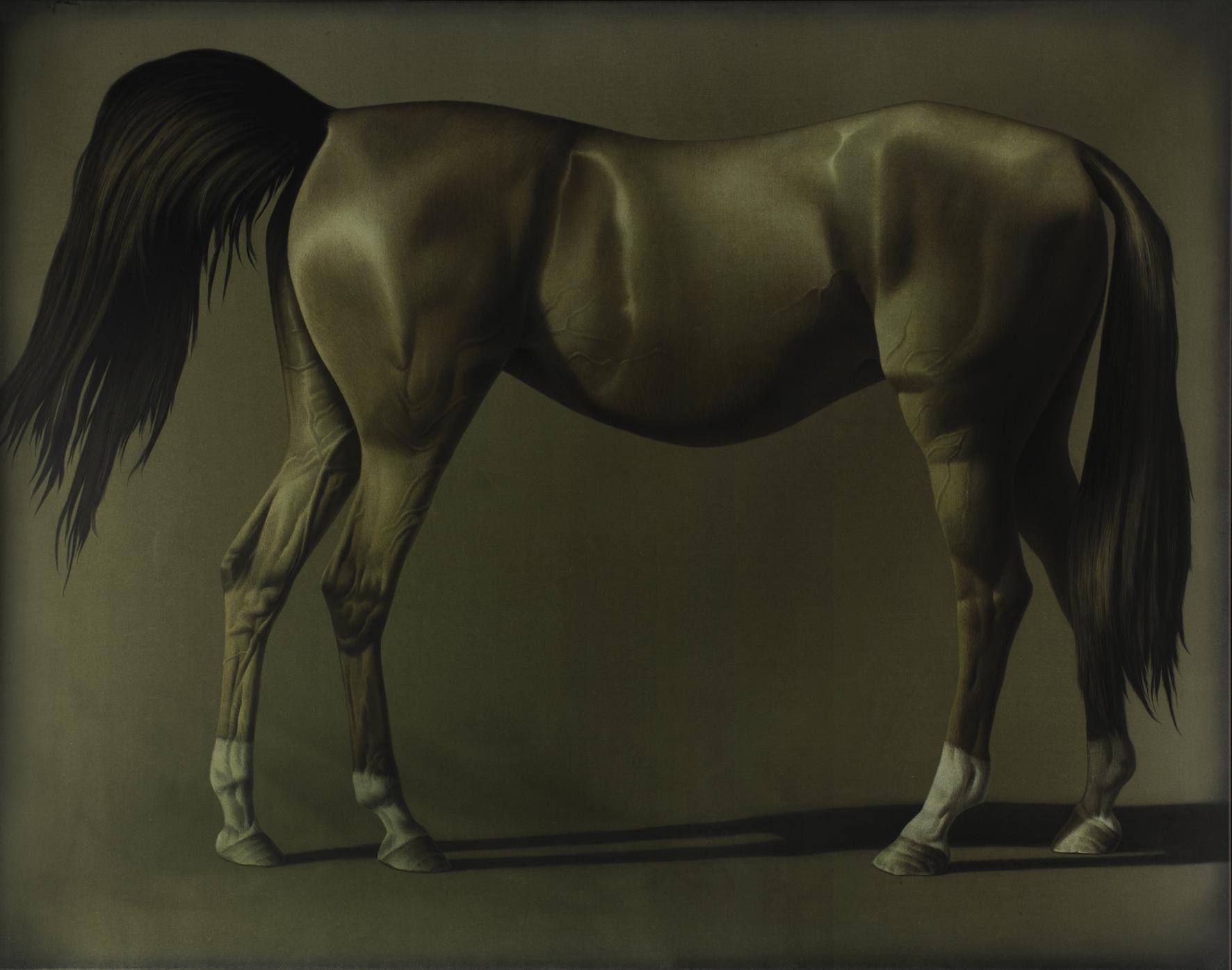 Horseback, 2014, Acryl auf Leinwand, 140 x 180 cm