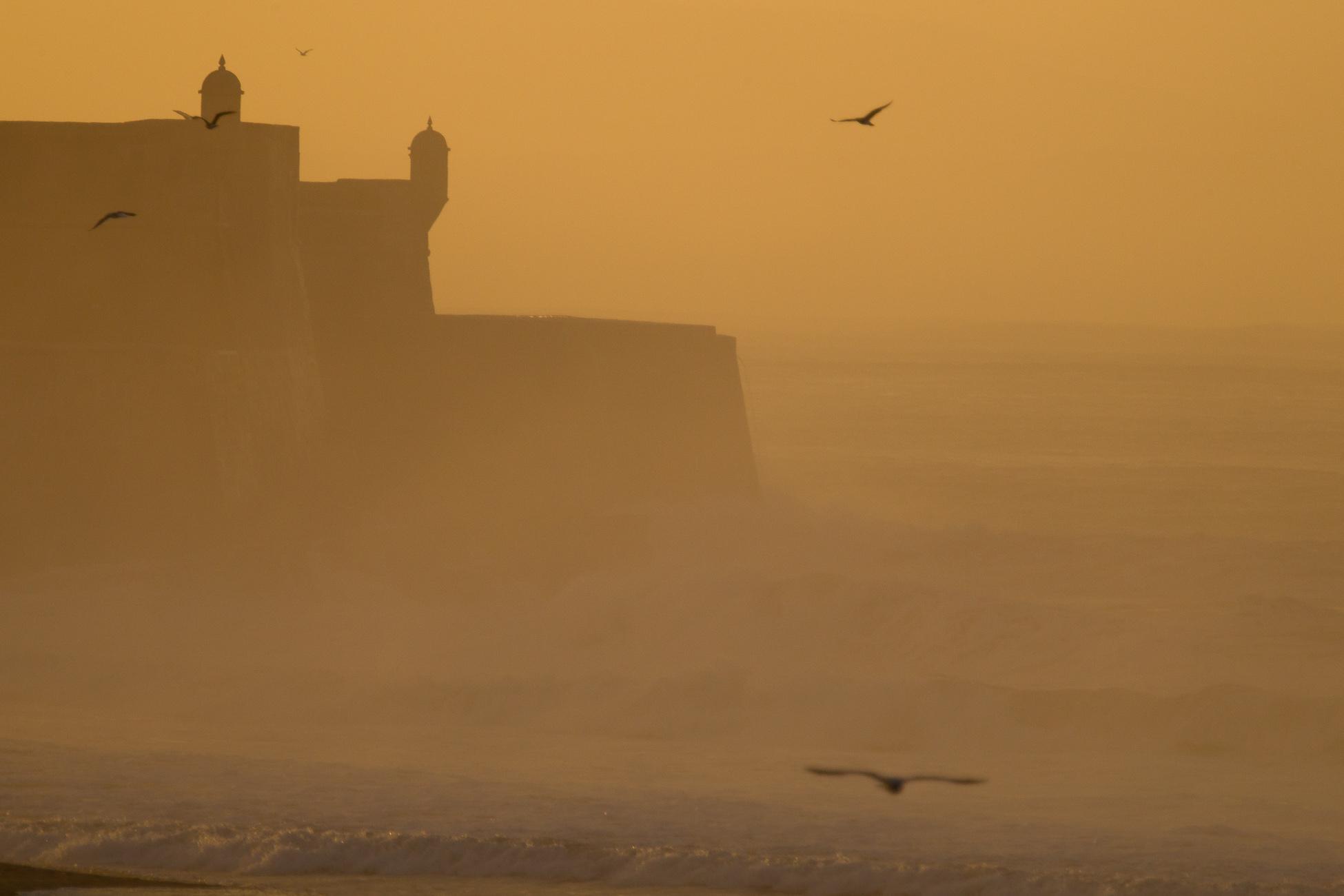 Gonçalo Barriga Photographer - Beach sunrise