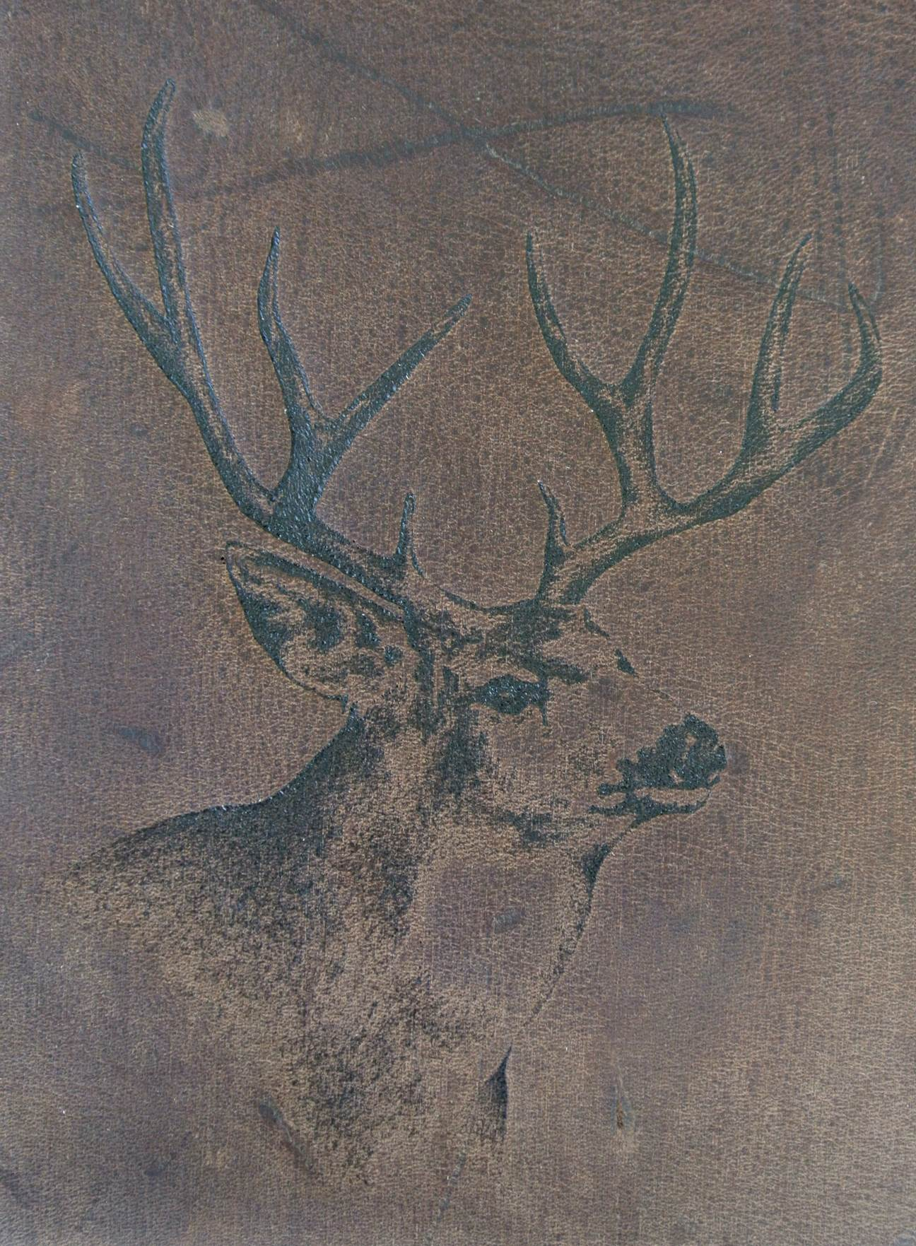Circle M-Brand heat engraving Mule Buck.jpg