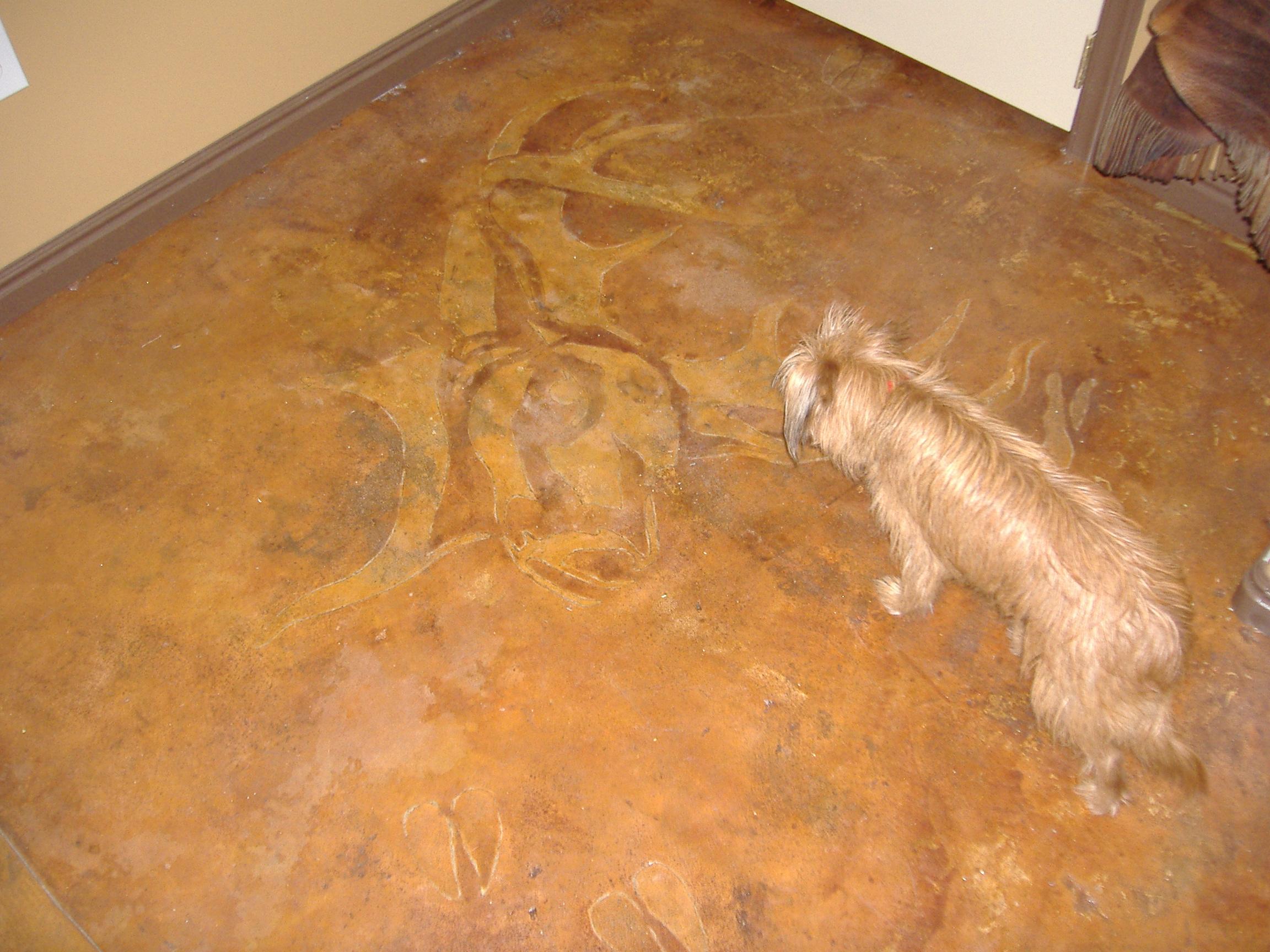 Circle M Brand Elk & dog.JPG