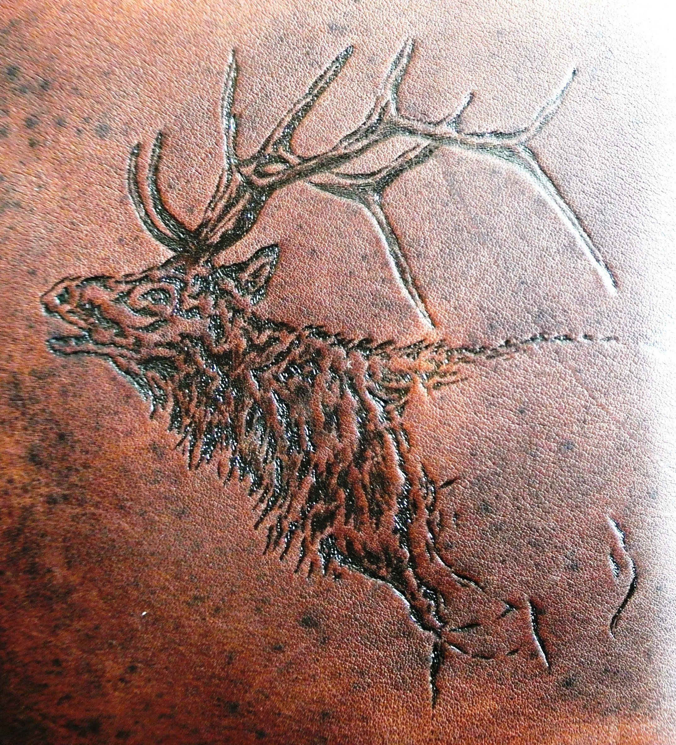 Circle M Brand - Heat Engraved - Bull Elk.JPG