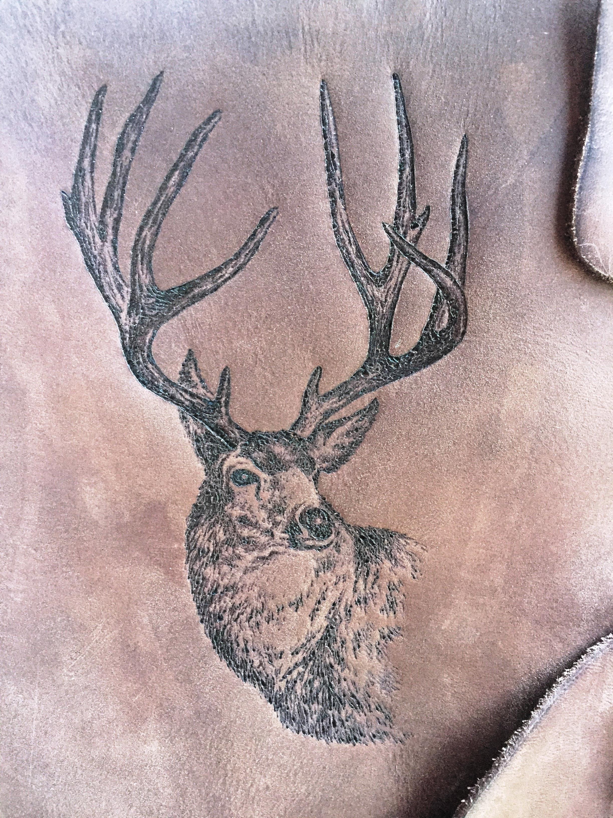Circle M Brand - Elk engraving.JPG